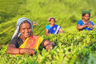 Nachhaltigkeit & soziales Engagement